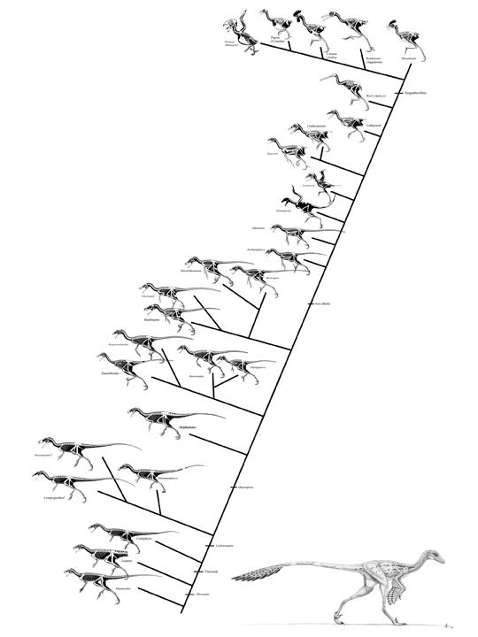 Die Wand - Eine Evolutionskette in der Architekturgeschichte (3/5)